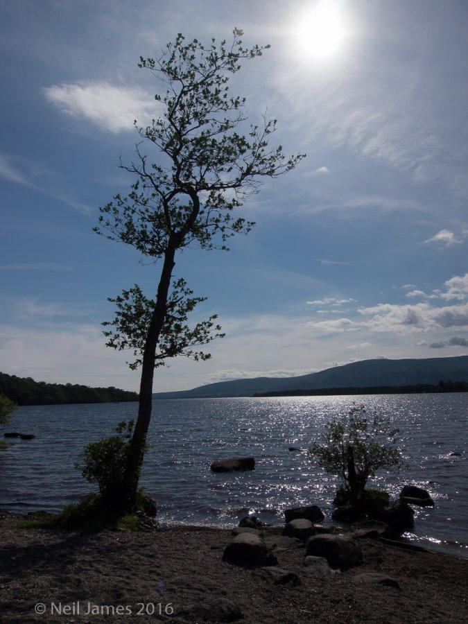 Scotland 2012 7