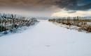 Hango Snow