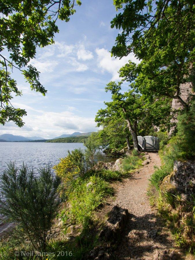 Scotland 2012 3