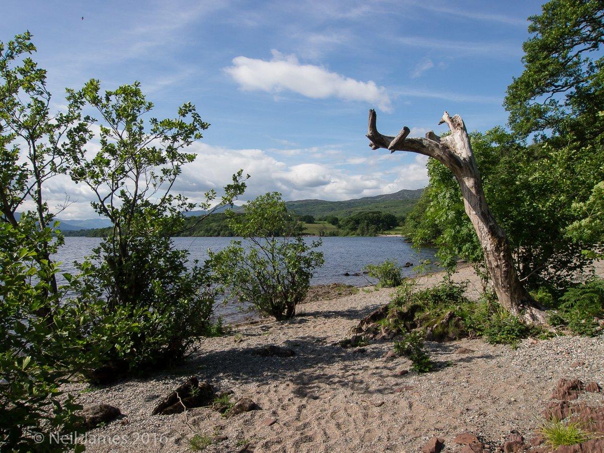 Scotland 2012 4