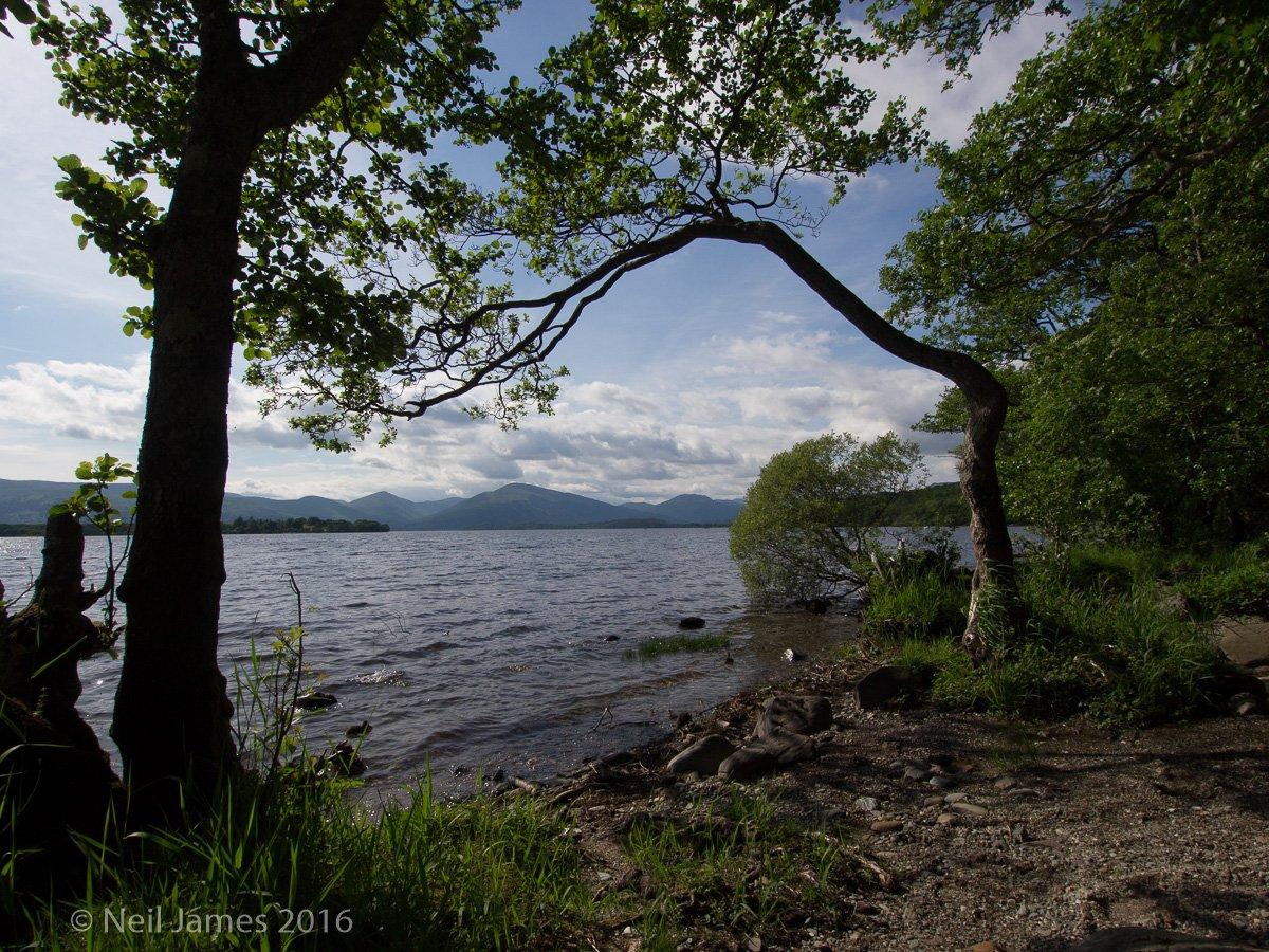 Scotland 2012 5